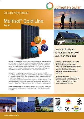 Multisol® P6-54 Gold Line