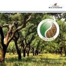Corktech-Brochure-FR
