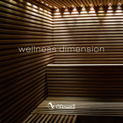 Wellness Dimension
