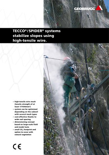 TECCO® / SPIDER® systems stabilize slopes using high-tensile wire.